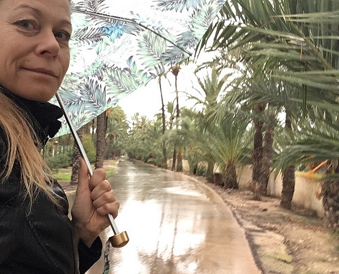 elche-in-de-regen
