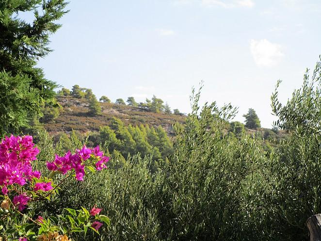 wandelen-natuur-chalkidiki