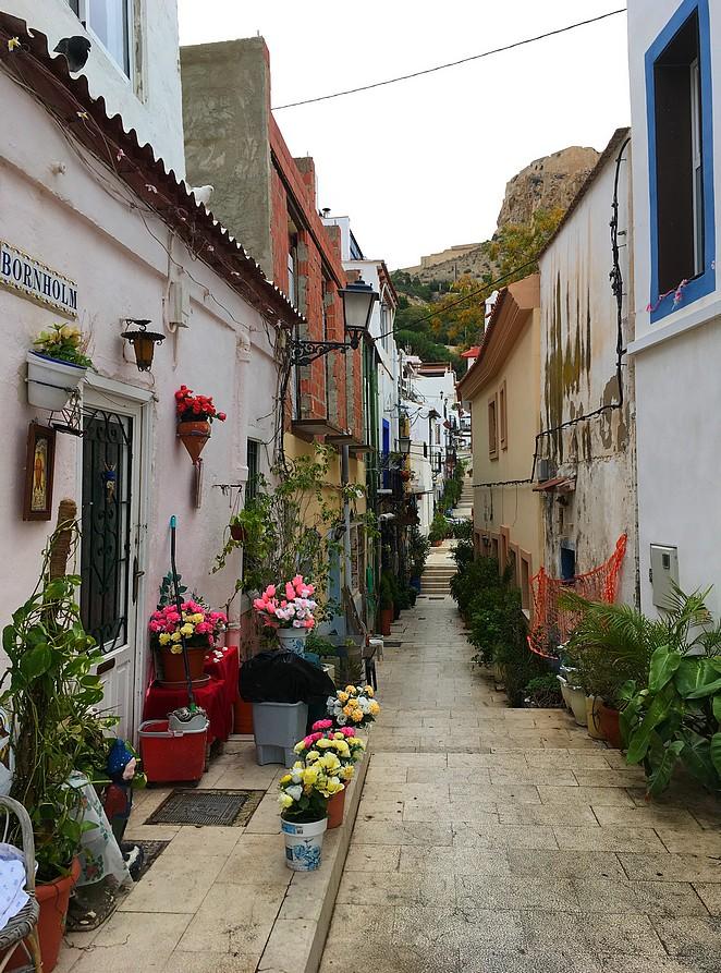 Bloemen-straatje-Santa-Cruz