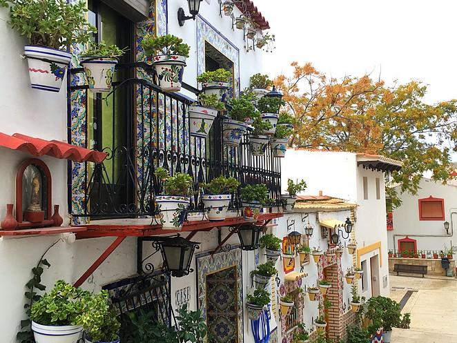 Bloempotten-buurt-Alicante