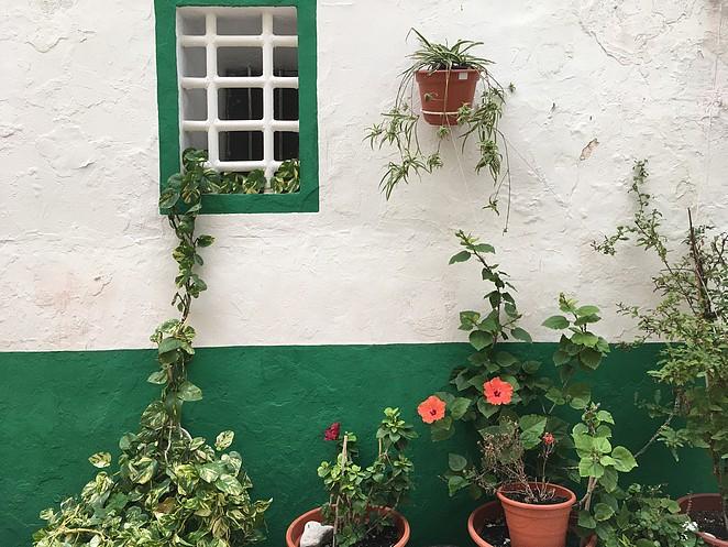 Mooiste-wijk-Alicante