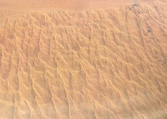 Zand-woestijn