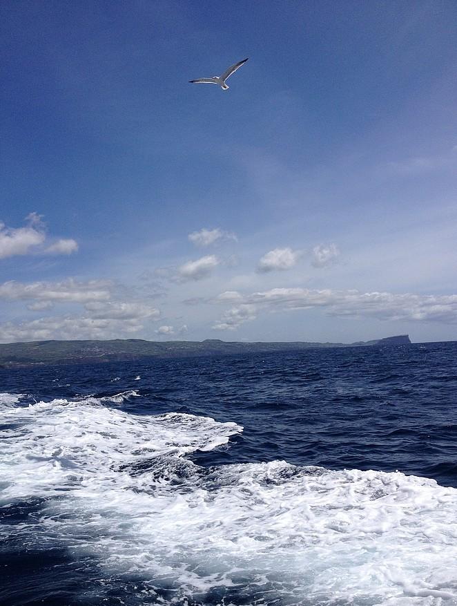 Boottocht-Azoren