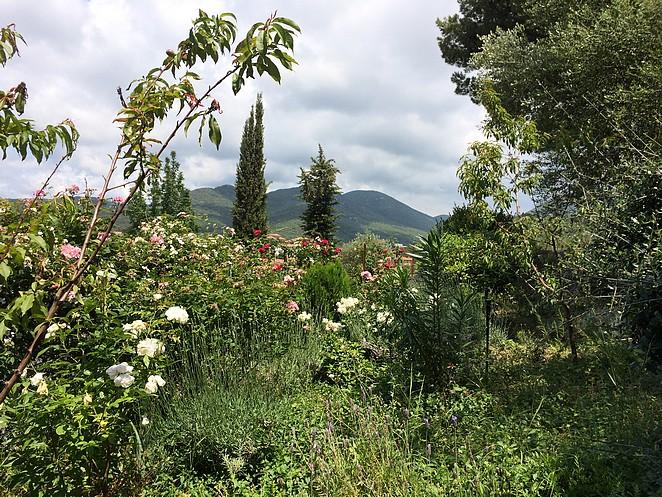 Mooie-rustige-plek-Toscane
