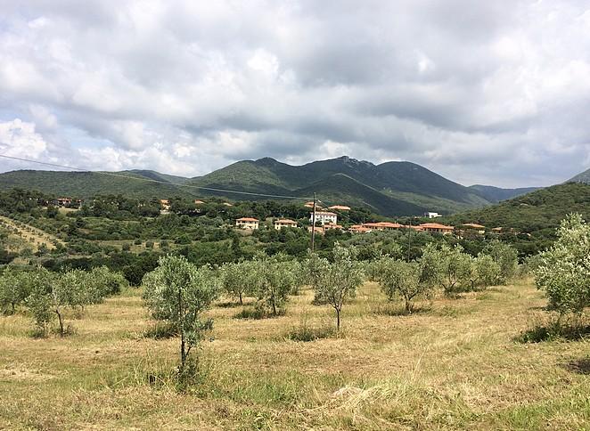Typisch-Toscaans-landschap