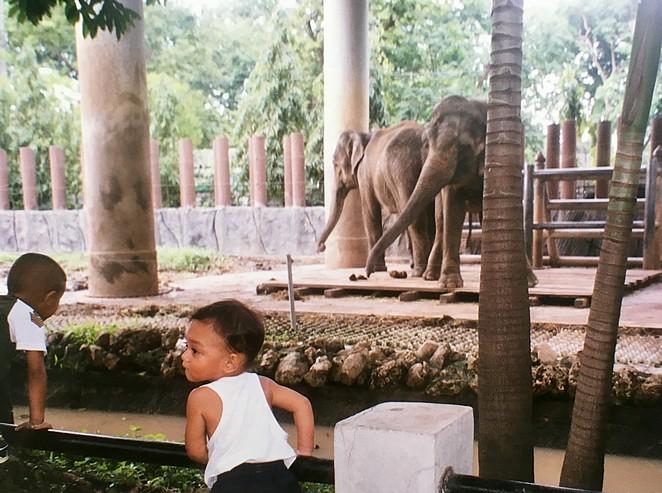 Dusit-Zoo-dierentuin-Bangkok