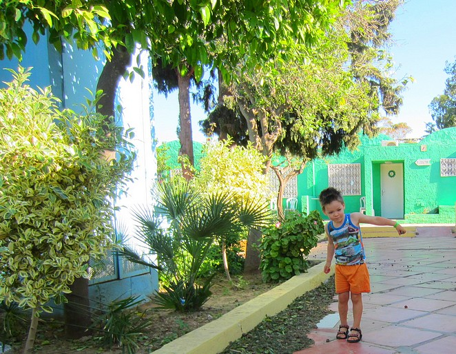 Tunesie-gekleurde-huisjes