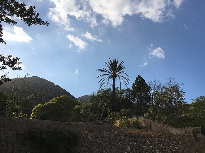 landschap-mallorca