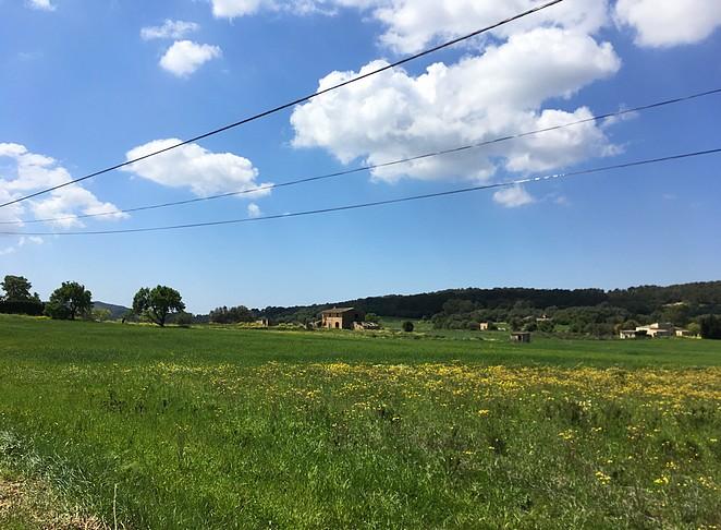 vlak-gedeelte-Mallorca