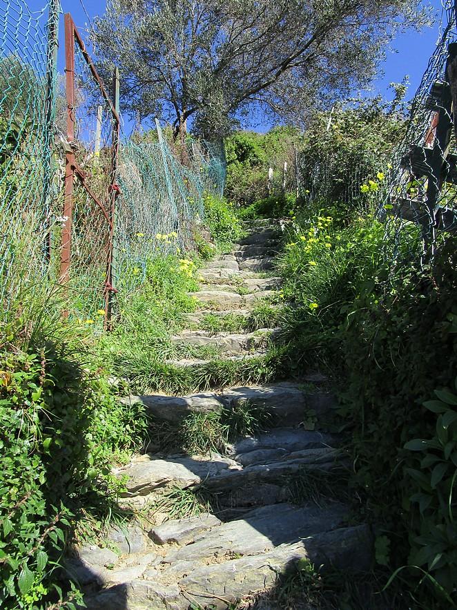 wandelpad-vernazza-monterosso