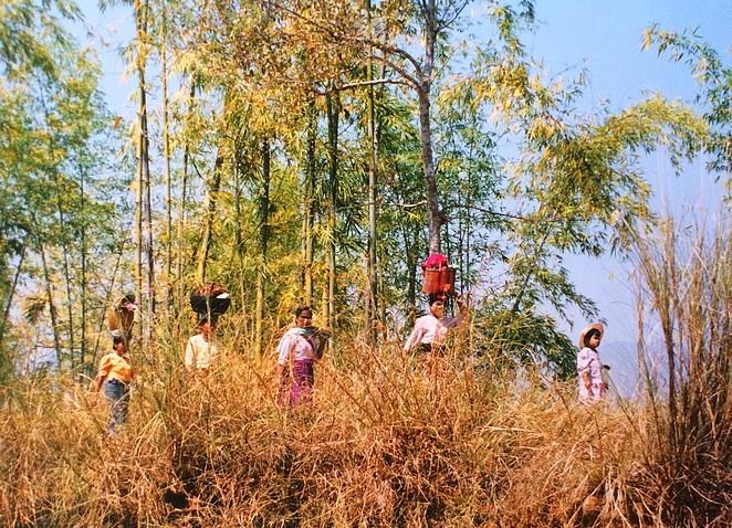 vrouw-myanmar