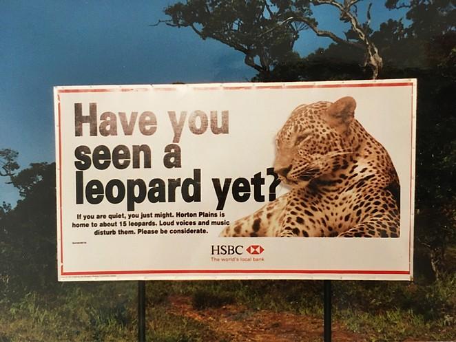 luipaard-sri-lanka
