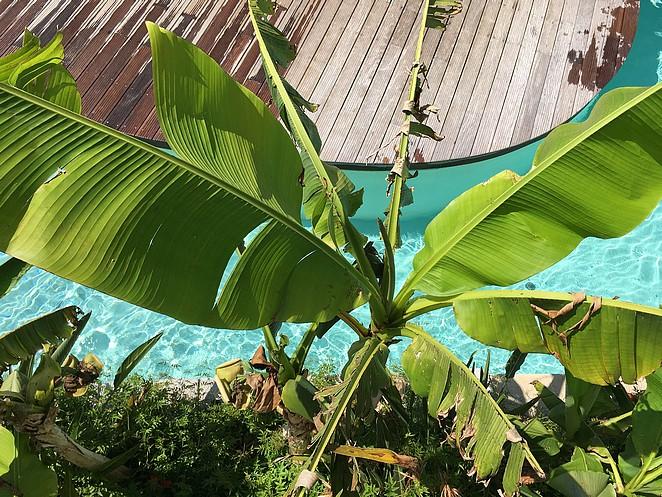 tropisch-zwembad-kids-frankrijk