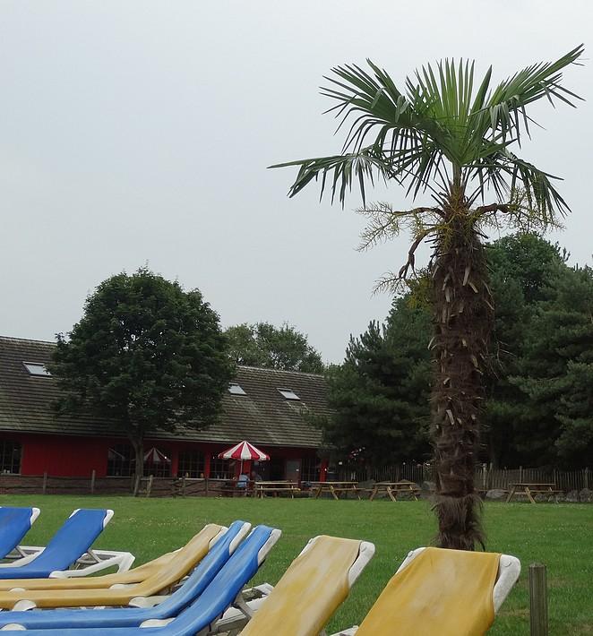 zomervakantie-nederland