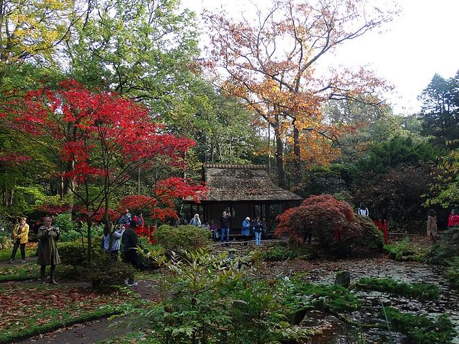 Tijd Voor Tuin : Tijd voor de tuin lenny s adventures