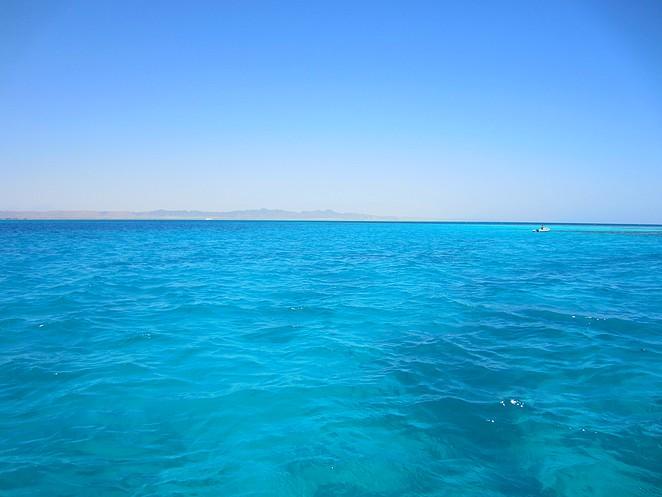 excursie-rode-zee