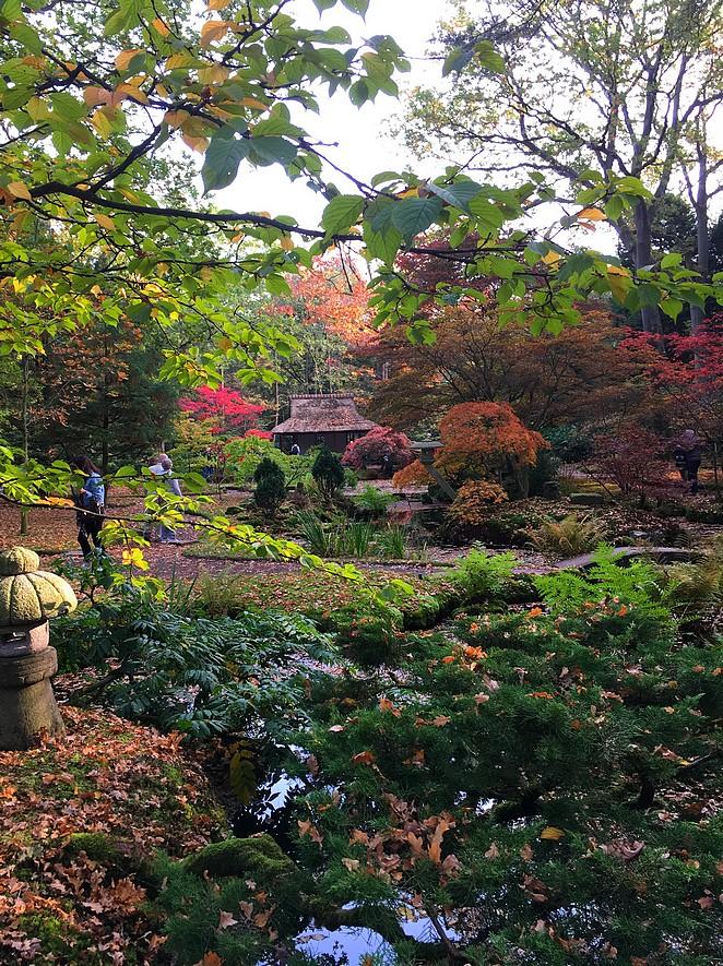 japanse-tuin-rustig