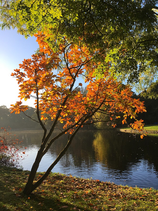 lastminute-herfst-nederland