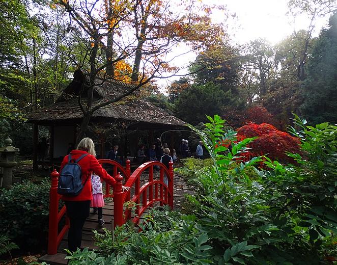 met-kinderen-de-japanse-tuin-bezoeken