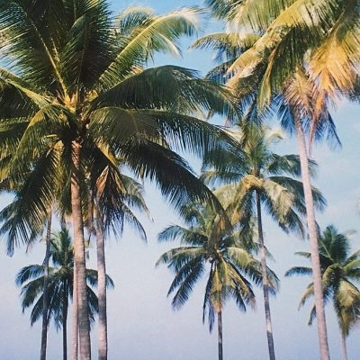 Rondreis van 2 of 3 weken door Thailand