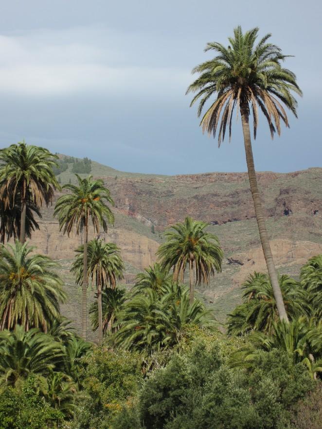 canarische-eilanden-waar-naartoe