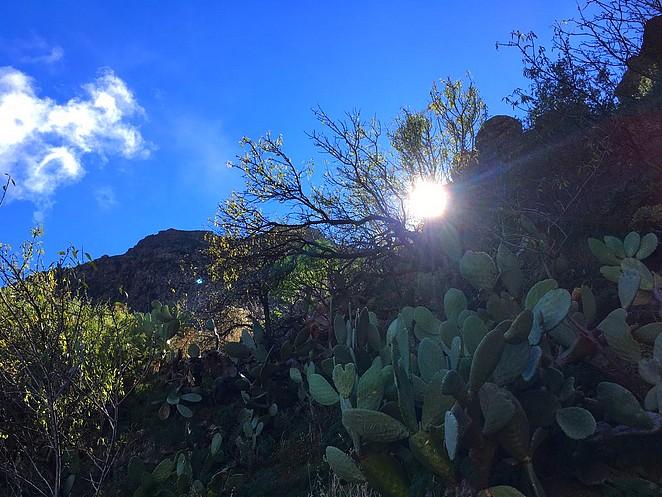 hike-gran-canaria