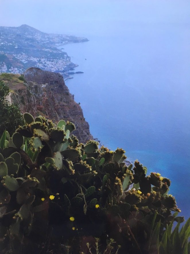 viewpoint-madeira
