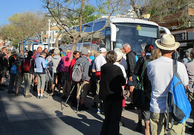 bus-mallorca-walking-event