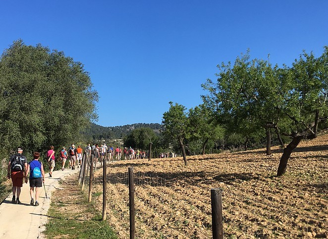 mallorca-walking-event