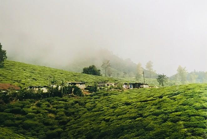 mooiste-plaatsen-sri-lanka