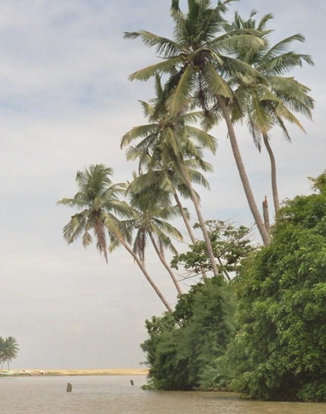 sri-lanka-stranden