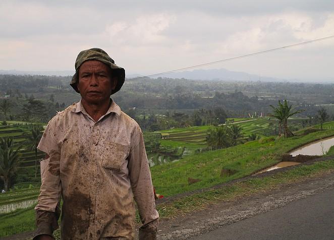 rijstboer-jatiluwih