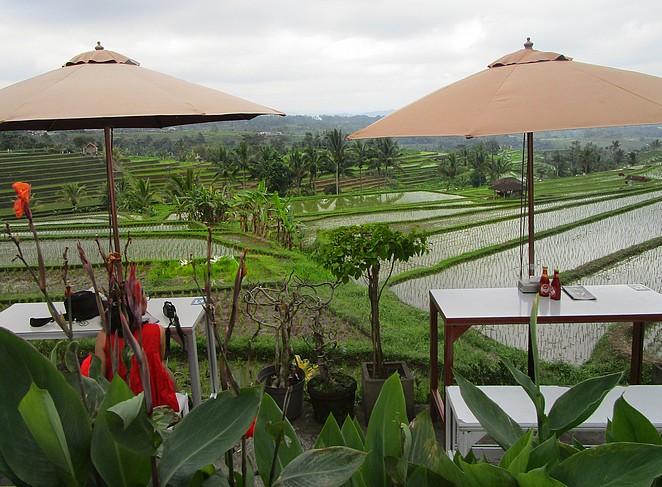 rijstterrassen-jatiluwih-blog