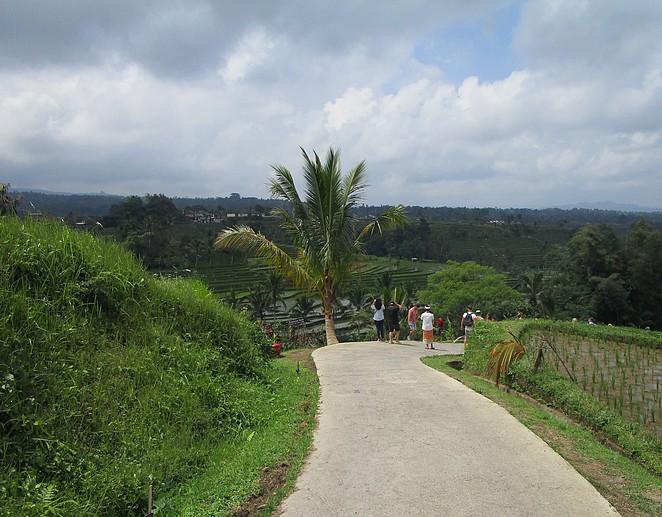 wandelen-jatiluwih-rijstvelden