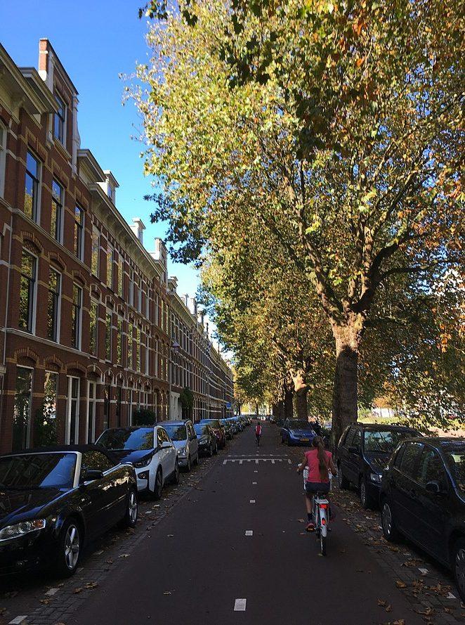 fietsen-den-haag