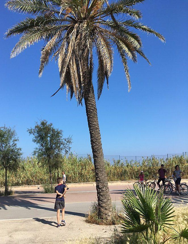 fietsen-met-kinderen-in-barcelona
