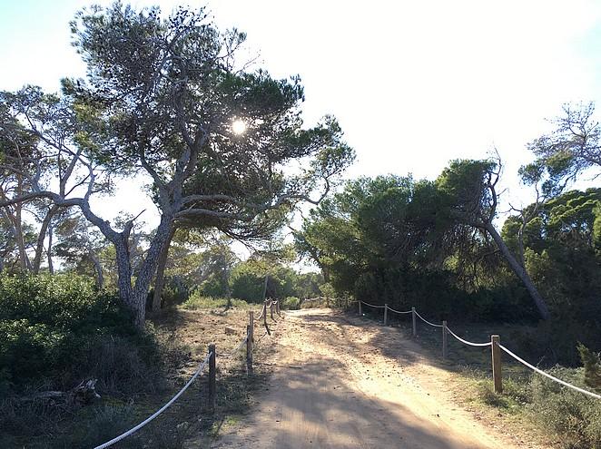 formentera-wandelroute