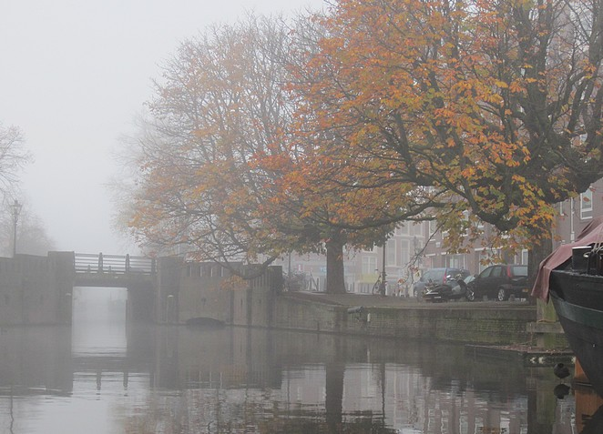 herfst-winter-den-haag