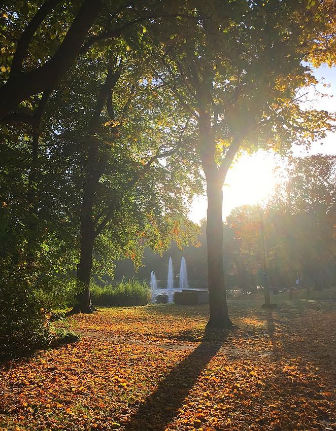 herfst-zuiderpark-den-haag