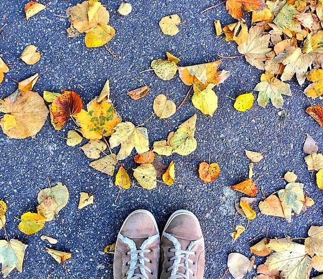 mooie-herfstwandeling-den-haag
