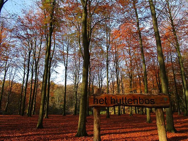 het-huttenbos-den-haag