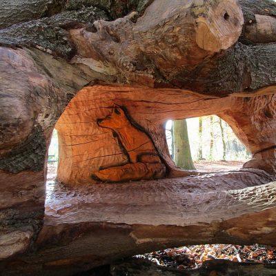 Het Huttenbos in Den Haag: speelbos met hutten en houtsculpturen