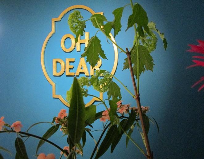 oh-dear-den-haag