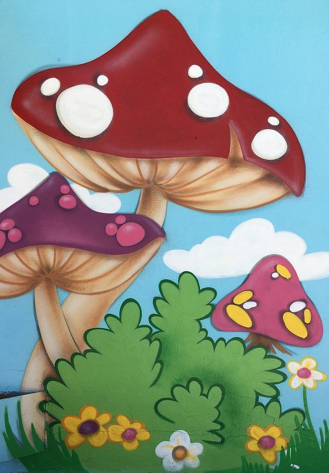 paddenstoelen-juzcar
