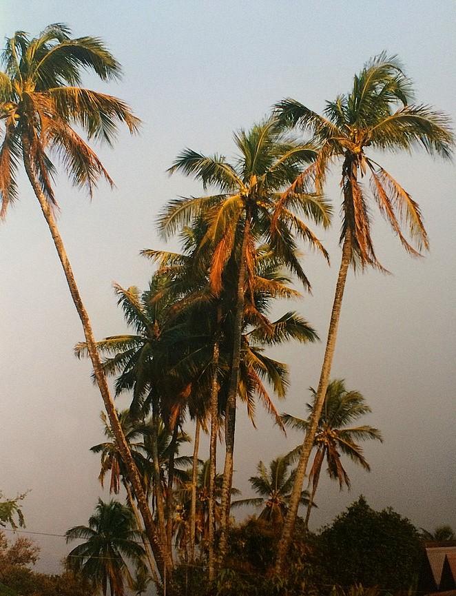Myanmar-strand
