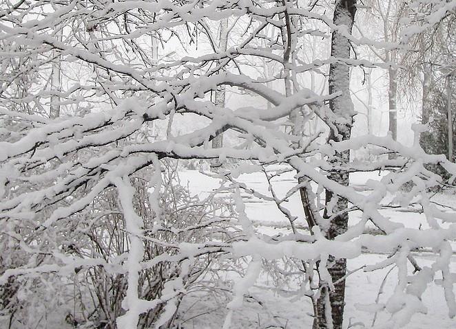 dagje-sneeuw