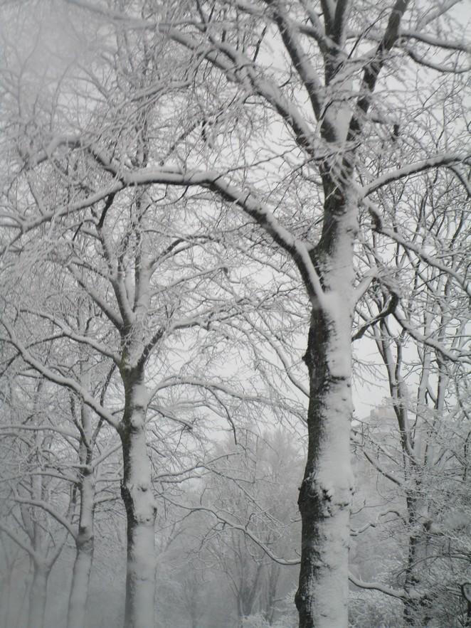 dagje-weg-in-de-winter