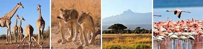 kenia-luxe-rondreis