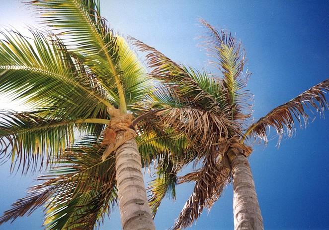 strandvakantie-mexico