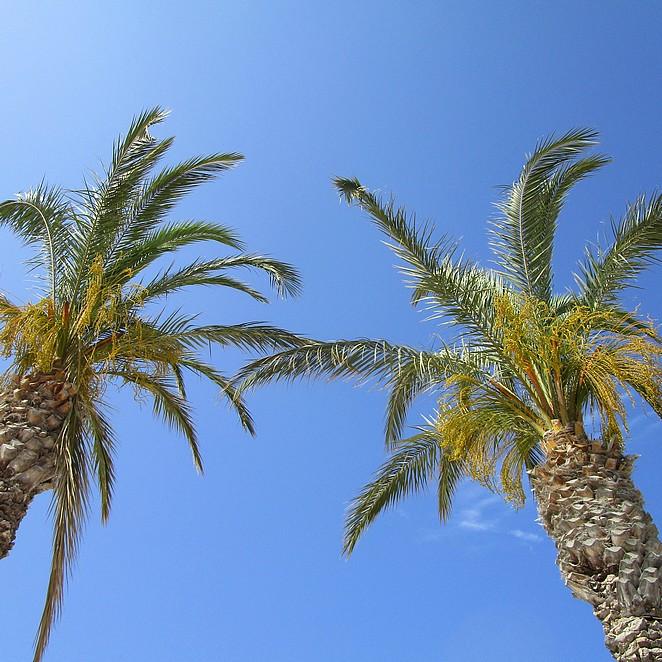 Vroegboekvoordeel: tips vakantie met vroegboekkorting